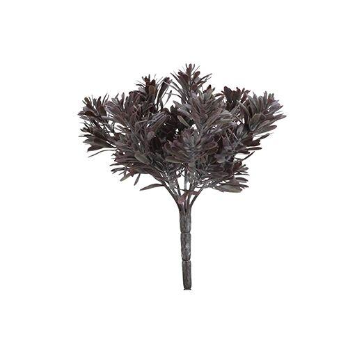 Vosteen Kunstpflanzen & -blumen Raluka Sukkulenten Busch 23 cm flieder (flieder)
