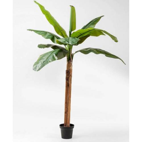 KARE Design Kunstpflanzen & -blumen Deko Pflanze Banana Tree 190 cm (grün)