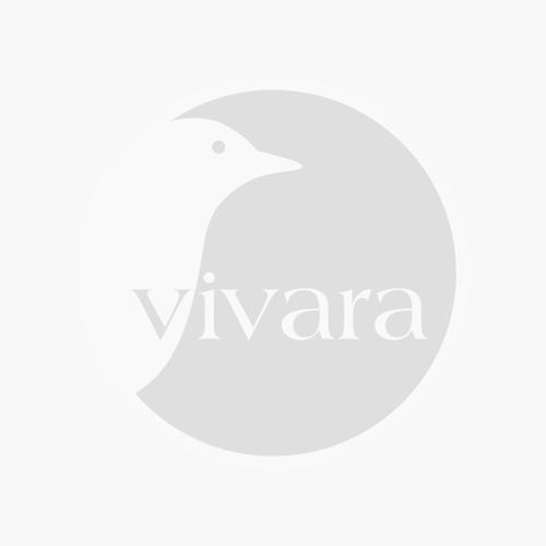 Vivara Fenster-Aufhängung Bird Swing XXL