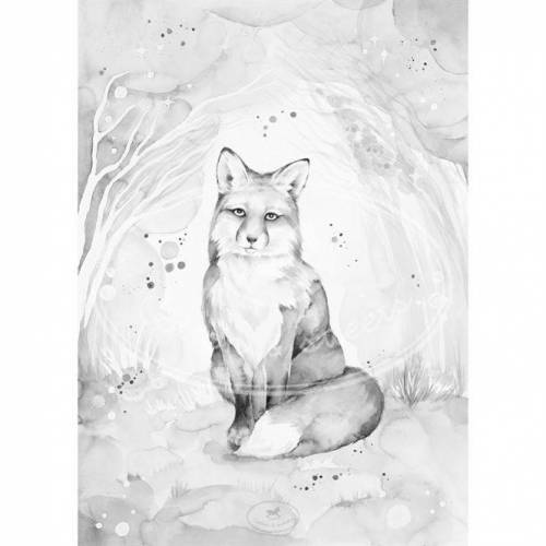 Cotton & Sweets Poster Lovely Fox 50x70 cm