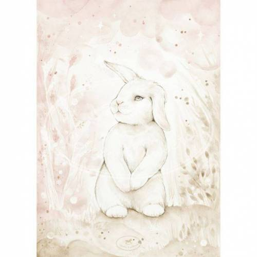 Cotton & Sweets Poster Lovely Rabbit50x70 cm