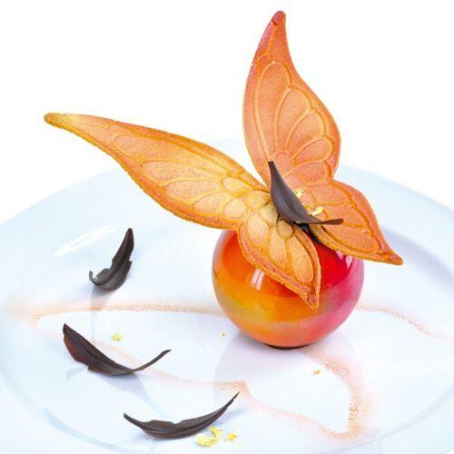 Schmetterlingsflügel groß