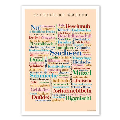 Poster Sächsische Wörter - DIN A4