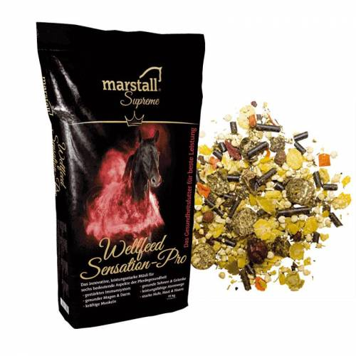 Marstall W