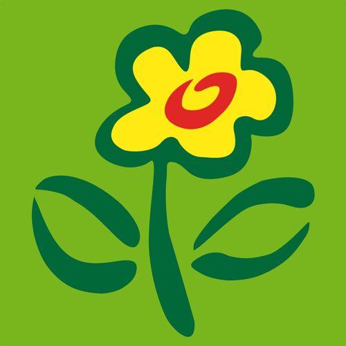 Blumenstrauß Landpartie