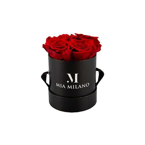 Mia Milano Infinity Rosen Konservierte Mia Milano rot  M
