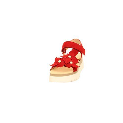 Gabor Sandalen/Sandaletten Gabor rot  4,4,5,5,5,5,5,6,6,7,8