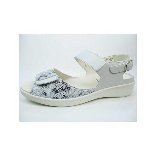 Solidus Sandalen/Sandaletten Solidus grau  40,41