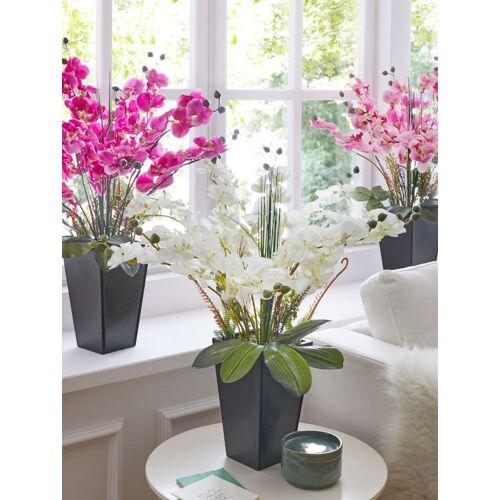 IGEA Orchidee im Topf IGEA Weiß