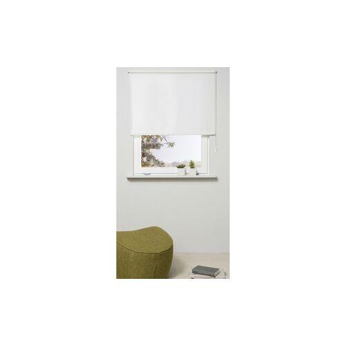 Möbel Kraft Klemmfix Rollo - weiß - Polyester - Gardinen & Vorhänge  Rollos & Sonnenschutz  Rollos - Möbel Kraft