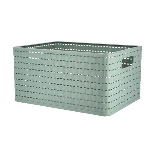 Rotho Aufbewahrungsbox - grün - Kunststoff - Aufbewahrung  Aufbewahrungsboxen - Möbel Kraft