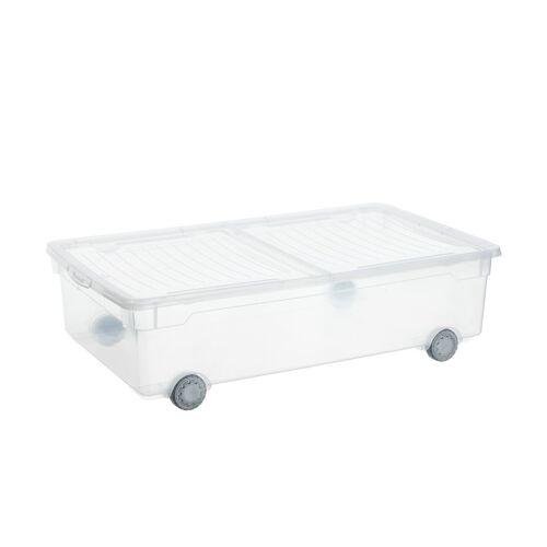 Rotho Aufbewahrungsbox mit Rollen - transparent/klar - Kunststoff - Aufbewahrung  Aufbewahrungsboxen - Möbel Kraft