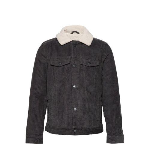 Hollister Hco. Guys Outerwear Jeansjacke Denimjacke Grau HOLLISTER Grau L,M,S,XXL,XS