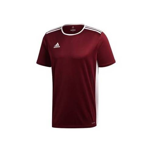 adidas  T-Shirt Entrada 18 EU S;EU L;EU XL