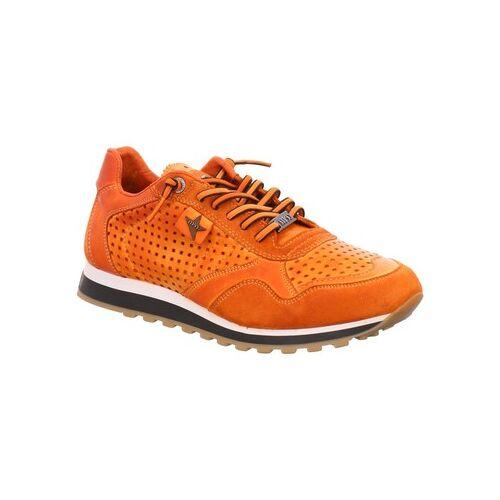 Cetti  Sneaker Schnuerschuhe C848 ambar ambar Leder C848 ambar 41;42;43;44;45;46