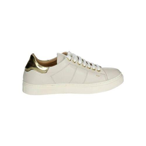 Braccialini  Sneaker B7 36