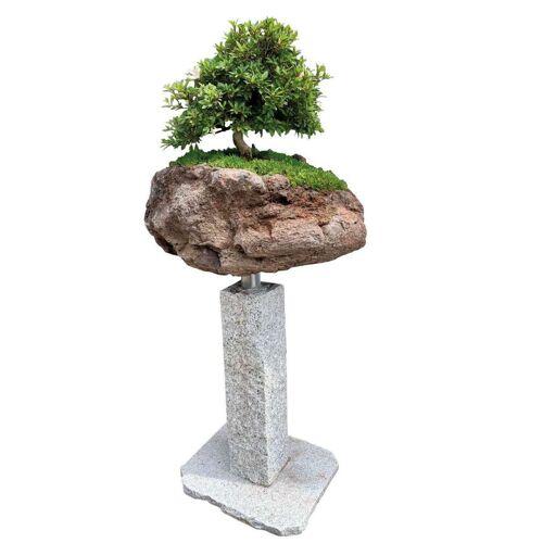 GK Bonsai-Minigarten Kategorie 2 Granitpalisade von Naturstein Geukes