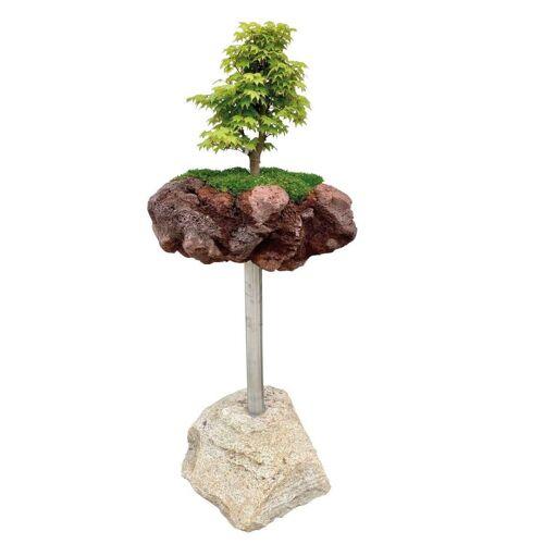 GK Bonsai-Minigarten Kategorie 1 Granitpalisade von Naturstein Geukes