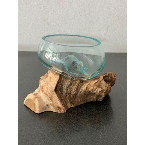 GK Glas auf Wurzel Schale