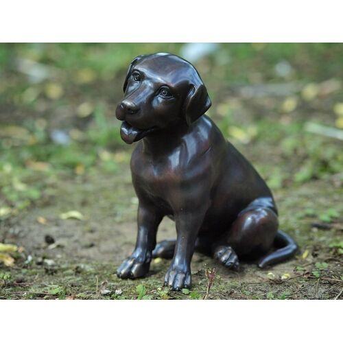 dsf Bronzefigur Labrador