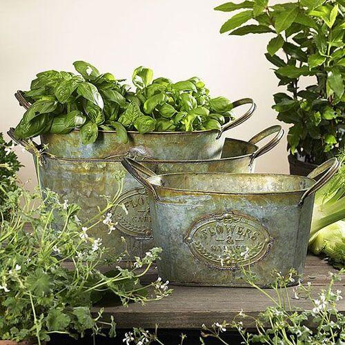 Zauberblume Topfset Flower, 3er Set, oval, Eisen, zink, antik von Zauberblume