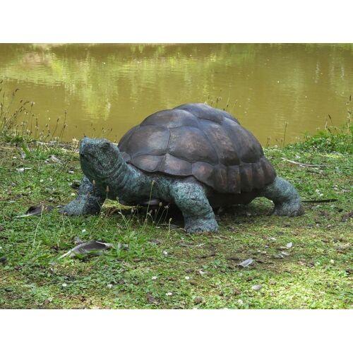 TB Bronzefigur Schildkröte