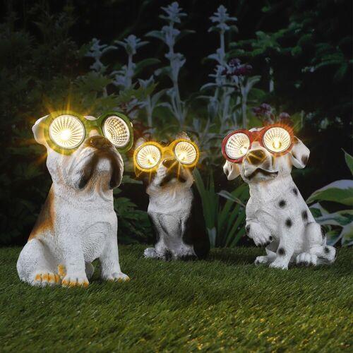 LED Solar Leuchte Hund Takko - warmweiße LED - H: 20cm - Grüne Brille
