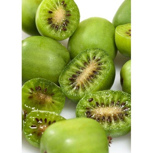 Kiwi (Issai Kiwiberry) selbstbefruchtend