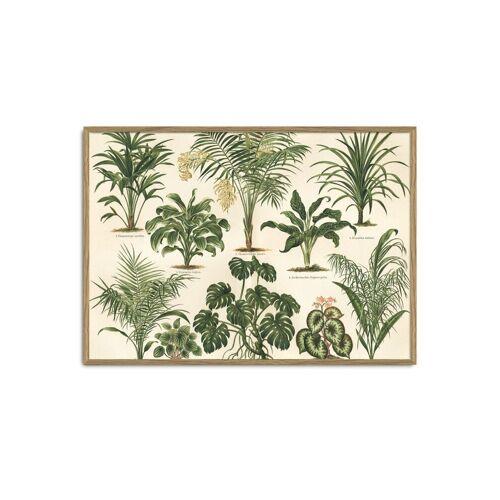 ART Kunstdruck Grünpflanzen I The Dybdahl