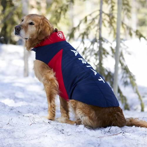Ariat Hundedecke SOFTSHELL