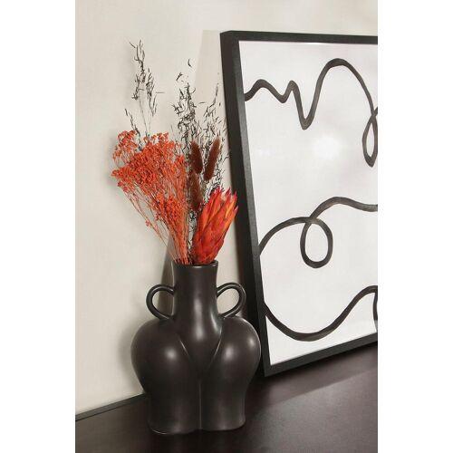 boohoo Womens Getrocknete Blumen - Orange - One Size, Orange