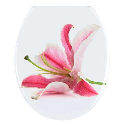 WENKO WC-Sitz Orchid, Duroplast