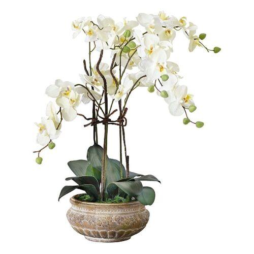 Living Kunstpflanze Living Weiß