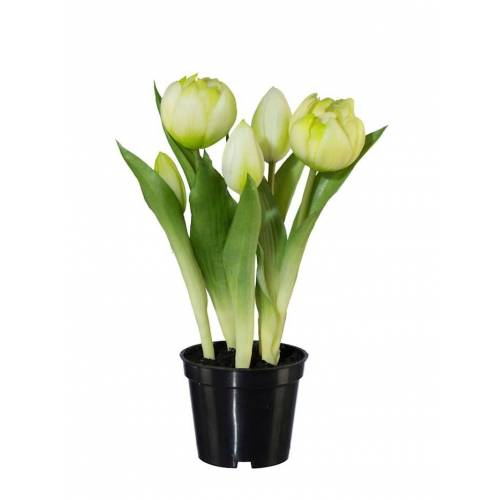 Globen Lighting 2er Set Tulpen Globen Lighting Weiß