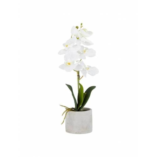 HTI-Living Kunstblume Orchidee im Topf HTI-Living Weiß