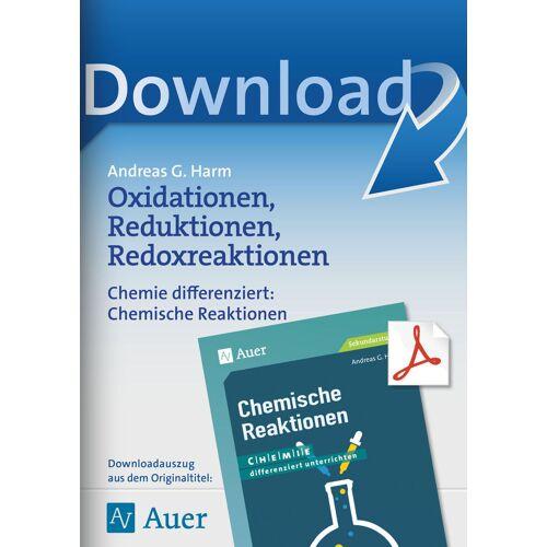 Auer Verlag Oxidationen, Reduktionen, Redoxreaktionen