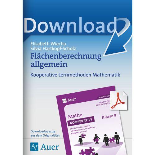 Auer Verlag Flächenberechnung allgemein