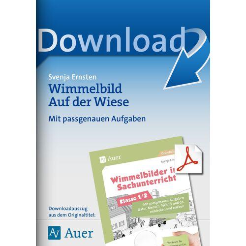 Auer Verlag Wimmelbild Auf der Wiese