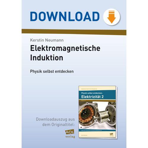 AOL-Verlag Elektromagnetische Induktion