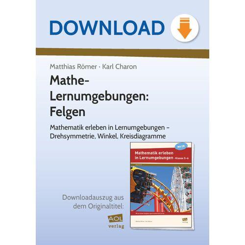 AOL-Verlag Mathe-Lernumgebungen: Felgen