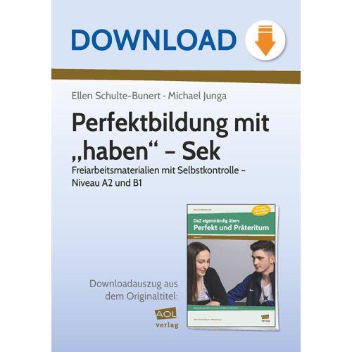 """AOL-Verlag Perfektbildung mit """"haben"""" - Sek"""