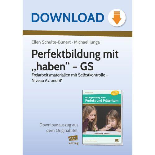 """AOL-Verlag Perfektbildung mit """"haben"""" - GS"""
