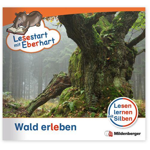 Mildenberger Lesestart mit Eberhart - Wald erleben
