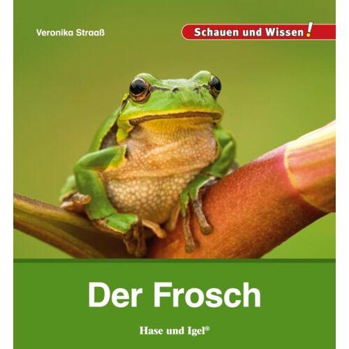 Hase und Igel Der Frosch