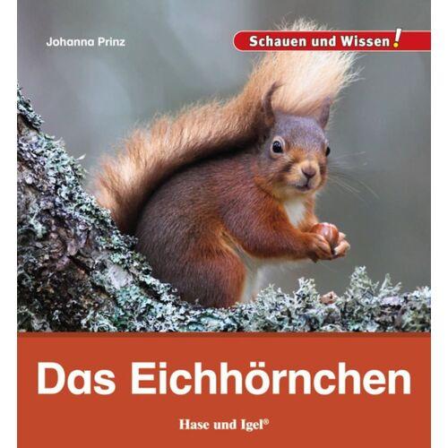 Hase und Igel Das Eichhörnchen
