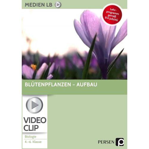 Persen Verlag Blütenpflanzen - Aufbau