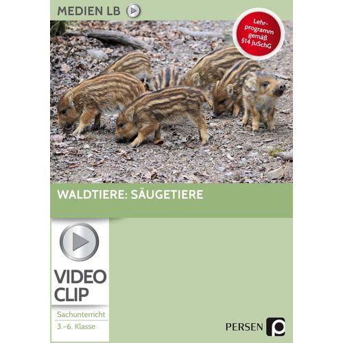 Persen Verlag Waldtiere: Säugetiere