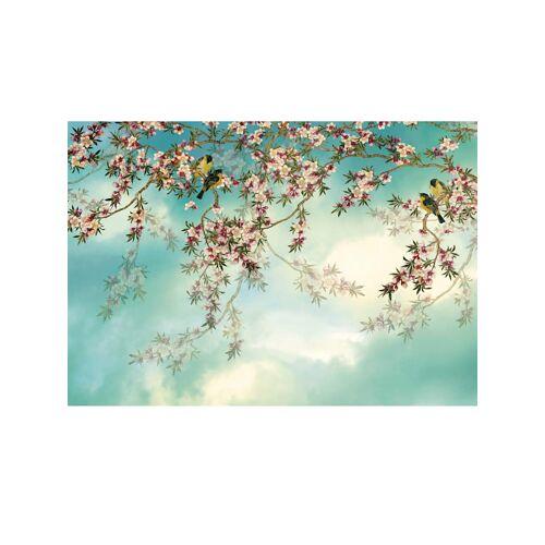 Komar Fototapete 'Sakura' Komar Mehrfarbig
