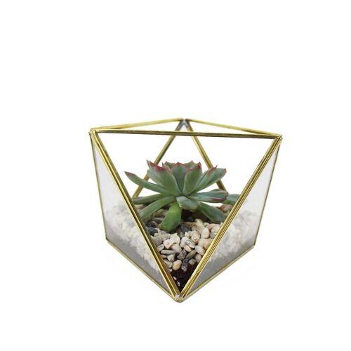 Mitienda Shop Geometrisches Terrarium Aus Glas Für Sukkulenten