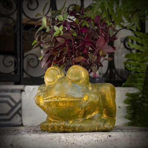 Mitienda Shop Blumentopf Aus Ton Frosch ton